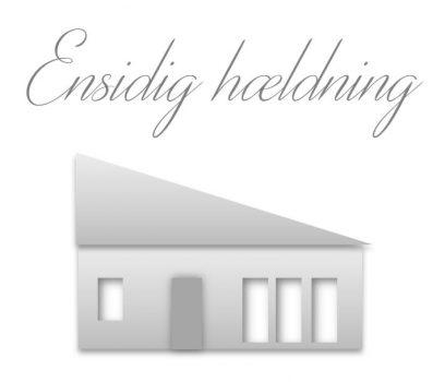 Hustype ensidig hældning tag hus