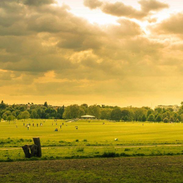 Beliggenhed byggegrund hus Danmark DK bo grønne områder